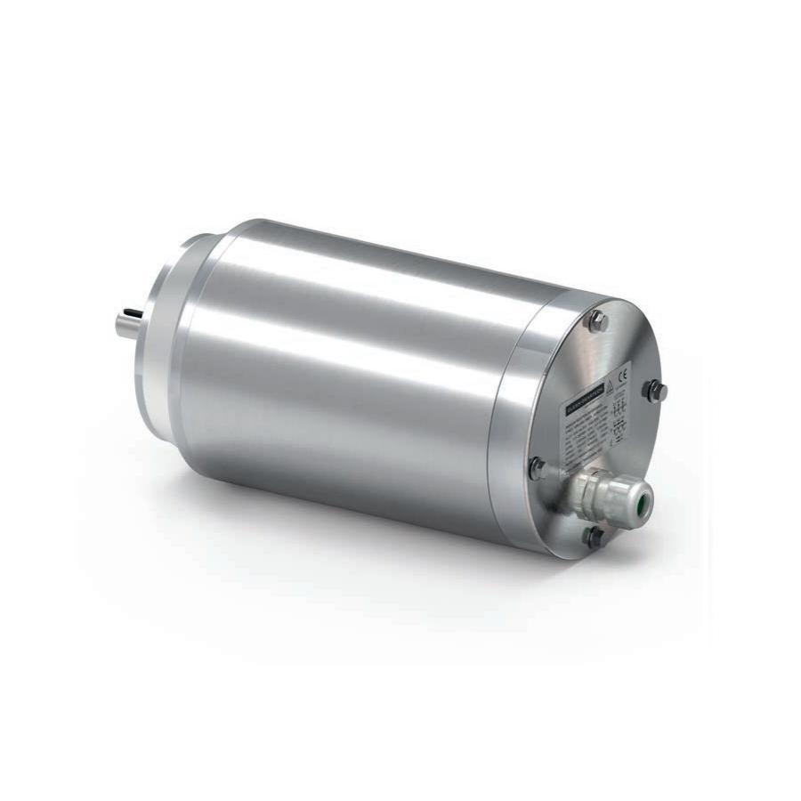 motori elettrici in acciaio inox